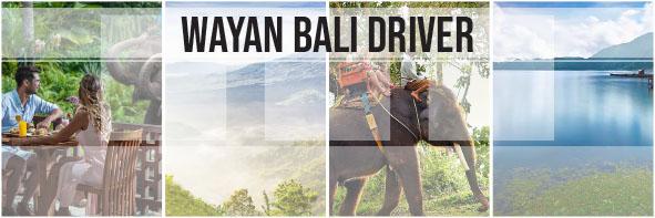 Elephant Safari & Kintamani Tour