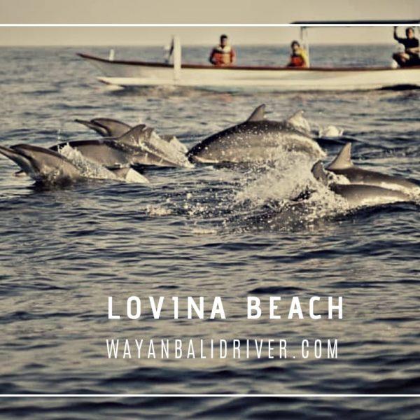 Lovina Beach Bali waanbalidriver.com