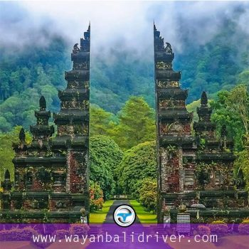 Explore Bedugul Bali Botanical Gardens