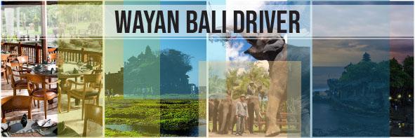 Elephant Safari & Tanah Lot Tour
