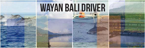 North Bali Dolphin & Twin Lake Tour