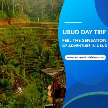 Ubud Day Trip, Feel the Sensation of Adventure in Ubud